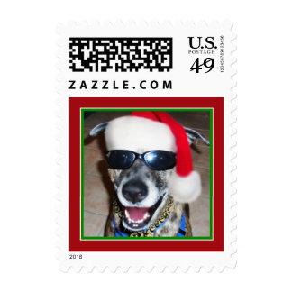 Christmas Dog With Santa Hat Postage