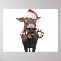 Christmas donkey - santa donkey - donkey santa poster