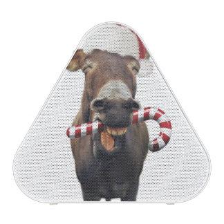 Christmas donkey - santa donkey - donkey santa speaker