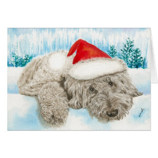 Christmas Doodle Greeting Cards