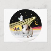 Christmas Dove - Guinea Pig 1 Holiday Postcard