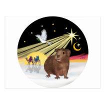 Christmas Dove - Guinea Pig 3 Postcard