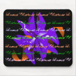 Christmas Dreams In Blue Poinsettia Mouse Pads