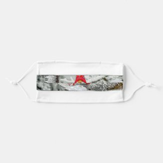 Christmas Elf On Snowy Branch Cloth Face Mask