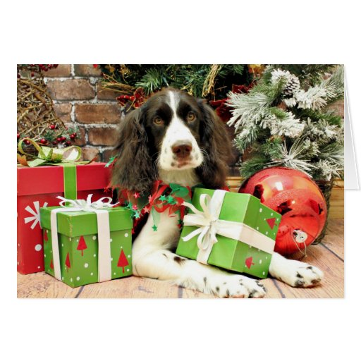 Christmas - English Springer Spaniel - Kinzie Stationery Note Card