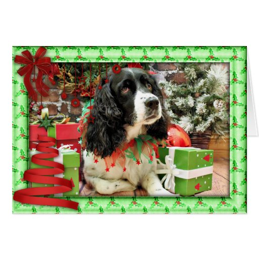 Christmas - English Springer Spaniel - Lucy Greeting Cards