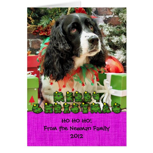 Christmas - English Springer Spaniel - Lucy Cards