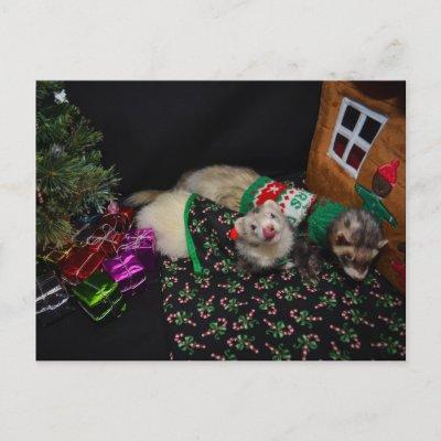 Christmas Ferret.Christmas Ferret Sable Holiday Postcard Zazzle Com
