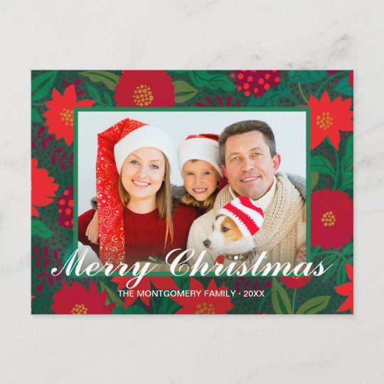 Christmas Floral Red Poinsettia Green Family Photo Holiday ...