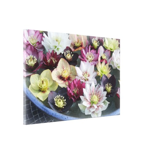 Christmas Flower Canvas Print