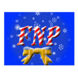 CHRISTMAS FNP - FAMILY NURSE PRACTITIONER POST CARDS