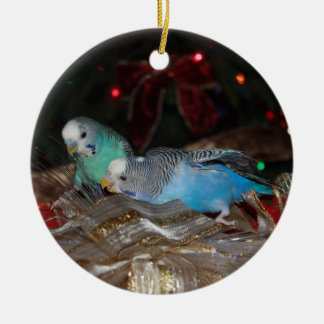 Christmas for the Birdies Ornament