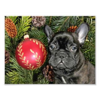 Christmas French Bulldog Photo Art