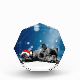 Christmas French Bulldog Puppies snow santa hat Award