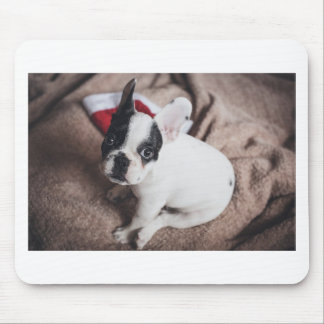 Christmas Frenchie Mouse Pad