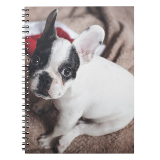 Christmas Frenchie Notebook