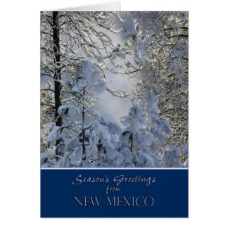 Christmas from New Mexico Card