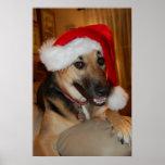 Christmas German Shepherd Poster
