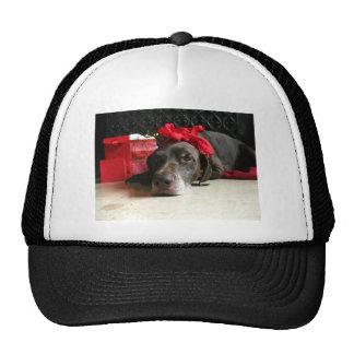 Christmas german shorthaired pointer trucker hat