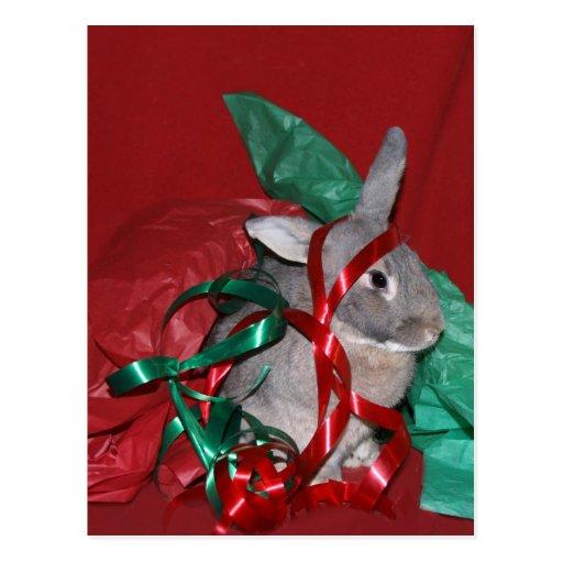 Christmas gift wrap frustration post card