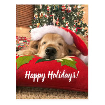 Christmas Golden Retriever Dog Asleep Under Tree Postcard