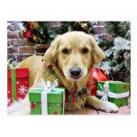 Christmas - Golden Retriever - Iris Post Card