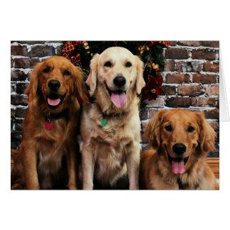 Christmas - Golden Retriever - Packer Bella Darby Card