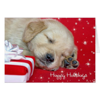 Christmas Golden Retriever Pup Card