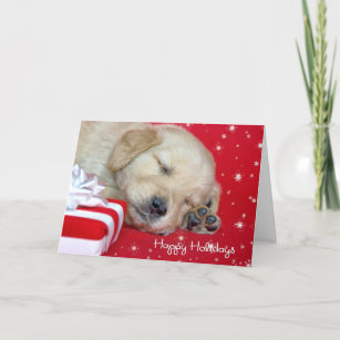 christmas golden retriever pup holiday card