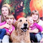 Christmas - Golden Retriever - Wrigley Photo Cut Out