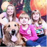 Christmas- Golden Retriever - Wrigley Photo Sculpture