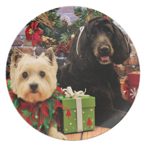 Christmas - GoldenDoodle Abby - Cairn Terrier Roxy Party Plates