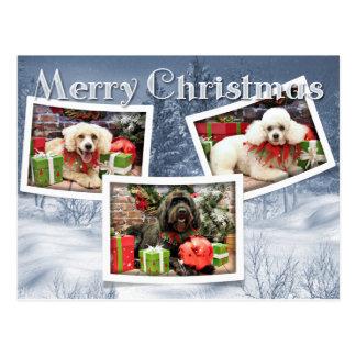 Christmas - GoldenDoodle Cockapoo Poodle - Arnold Postcards