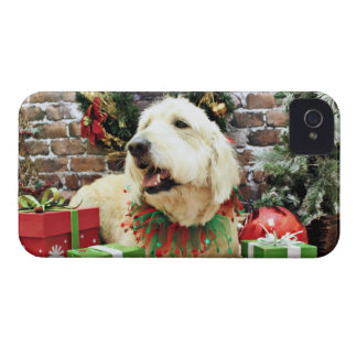 Christmas - GoldenDoodle - Frahm Case-Mate iPhone 4 Cases