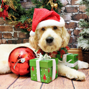christmas goldendoodle gus ceramic ornament