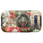 Christmas - GoldenDoodle - Pearl Jam Galaxy SIII Cover