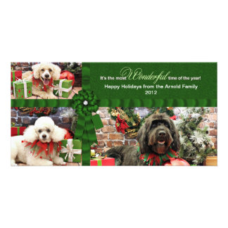 Christmas - GoldenDoodle Poodle Cockapoo - Arnold Picture Card