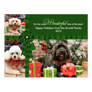 Christmas - GoldenDoodle Poodle Cockapoo - Arnold Post Cards