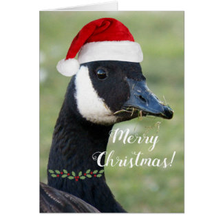 Christmas Goose Photo Holiday Card