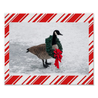 Christmas Goose with Wreath Poster