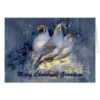 Christmas Grandson California Quail Bird Card