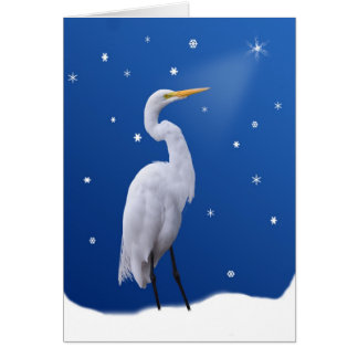 Christmas, Great Egret and Star Card