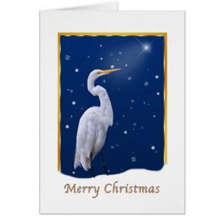 Christmas, Great Egret Bird, Star, Religious Card