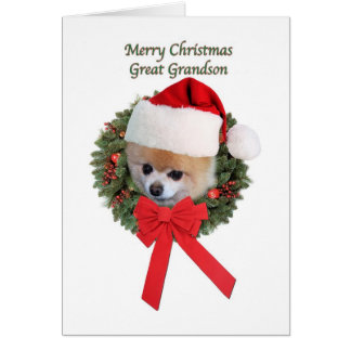 Christmas, Great Grandson, Pomeranian Dog Card
