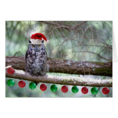 Christmas Great Horned Owl Card at Zazzle