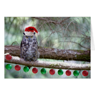Christmas Great Horned Owl Card