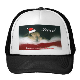 Christmas greetings trucker hat