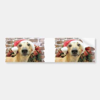 Christmas - Greyhound - Pena Bumper Sticker