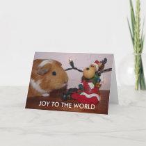CHRISTMAS GUINEA PIG CARD