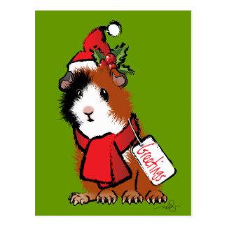 Christmas Guinea Pig Greeting Post Card